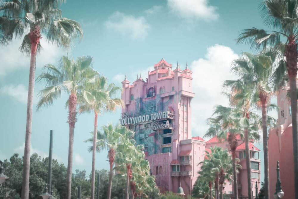Disney-and-palm-trees-florida-tourism-photography