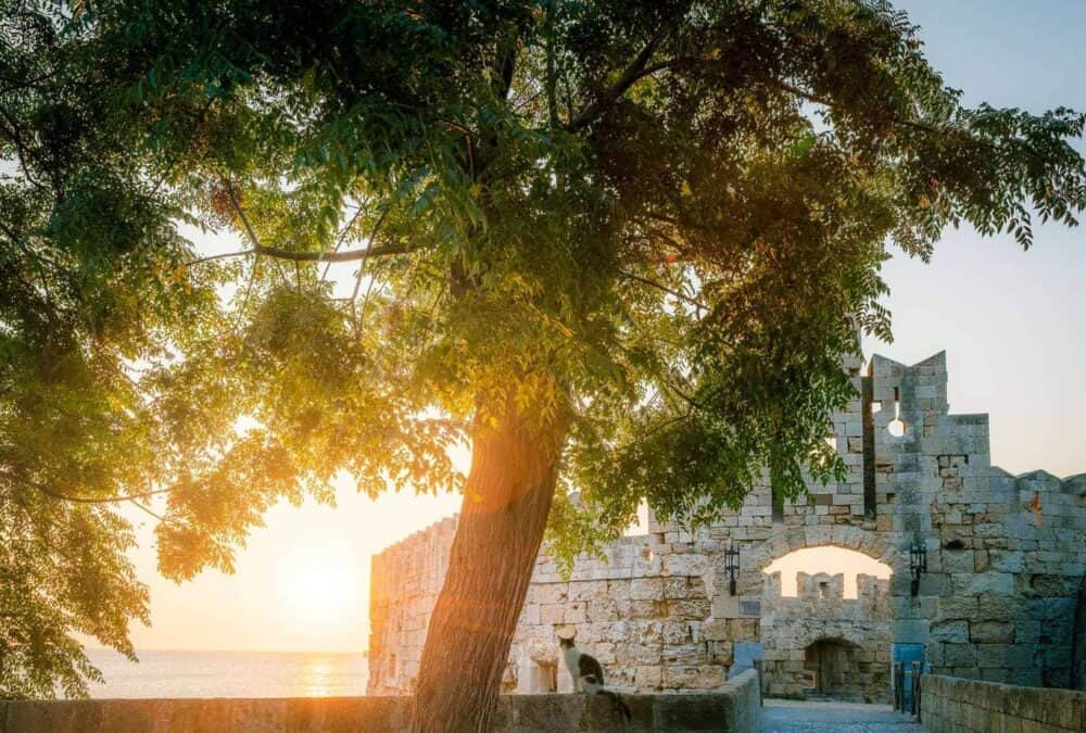 Cat-at-sunrise-at-gate-to-rhodes-old-town