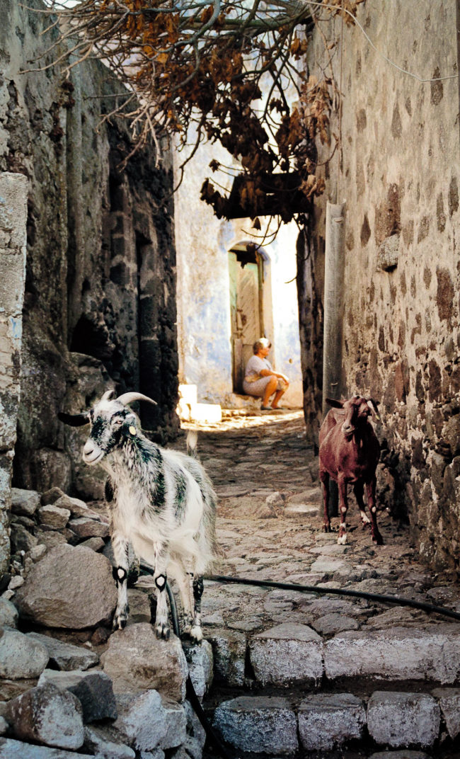 Travel-and-landscape-photography-blind-woman-goats-nisyros