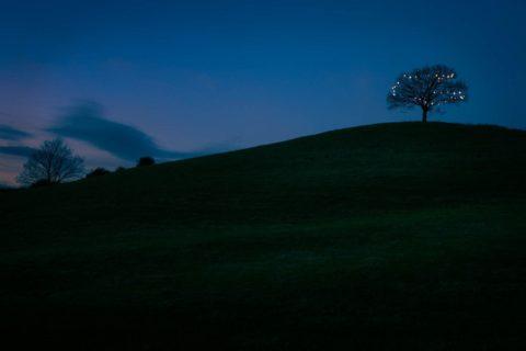 Burrow-hill-christmas-lights